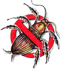 summer-pests